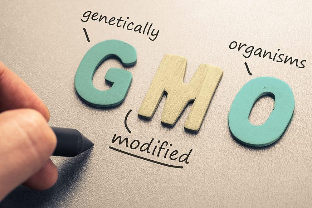 GMO vs Non GMO 3